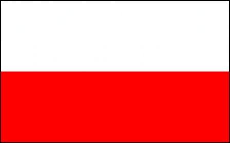 traduceri poloneza
